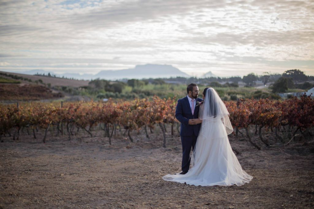Winelands Wedding, Vineyard